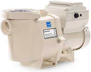 Pentair 011028 IntelliFlo VS Pool Pump, Almond
